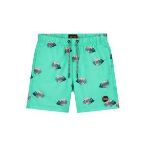 Shiwi Plavecké šortky  tyrkysová / zmiešané farby
