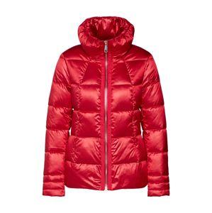 s.Oliver BLACK LABEL Zimná bunda  červené
