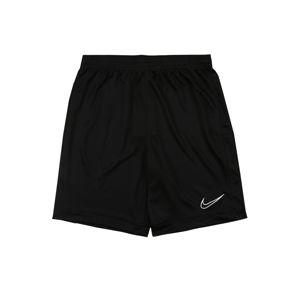 NIKE Športové nohavice 'Academy'  čierna