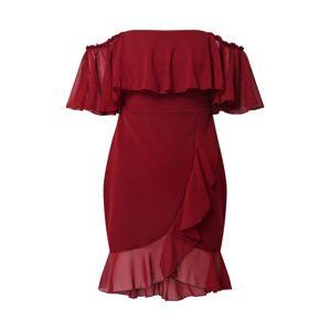 Trendyol Šaty  burgundská