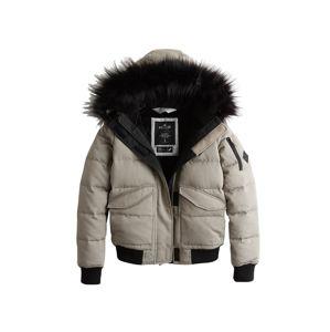 HOLLISTER Zimná bunda  sivá