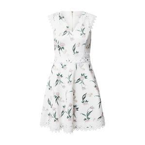 Ted Baker Šaty  biela / zmiešané farby